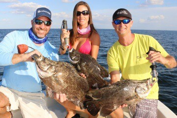Massive school of stingray descends on tampa bay goes for Fishing with luiza