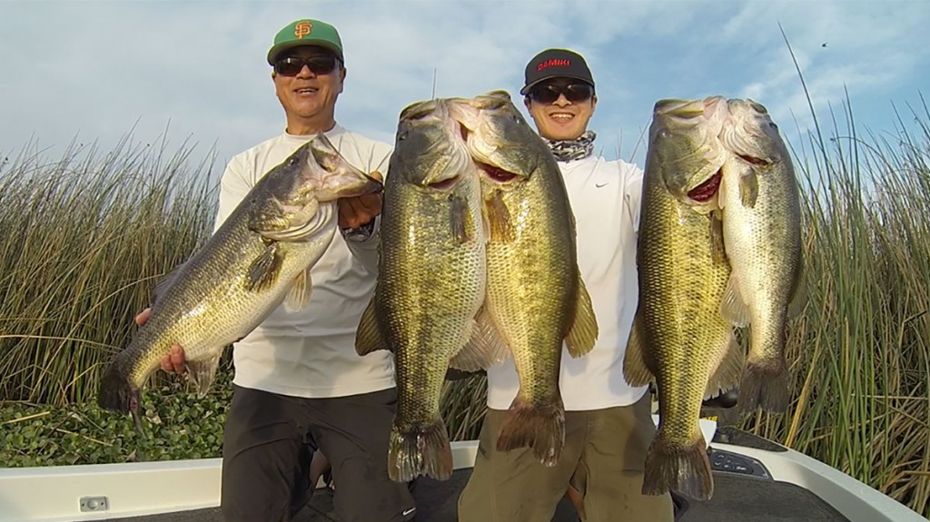 Fwc 39 s new largemouth bass regulations seek to simplify for California fishing regulations