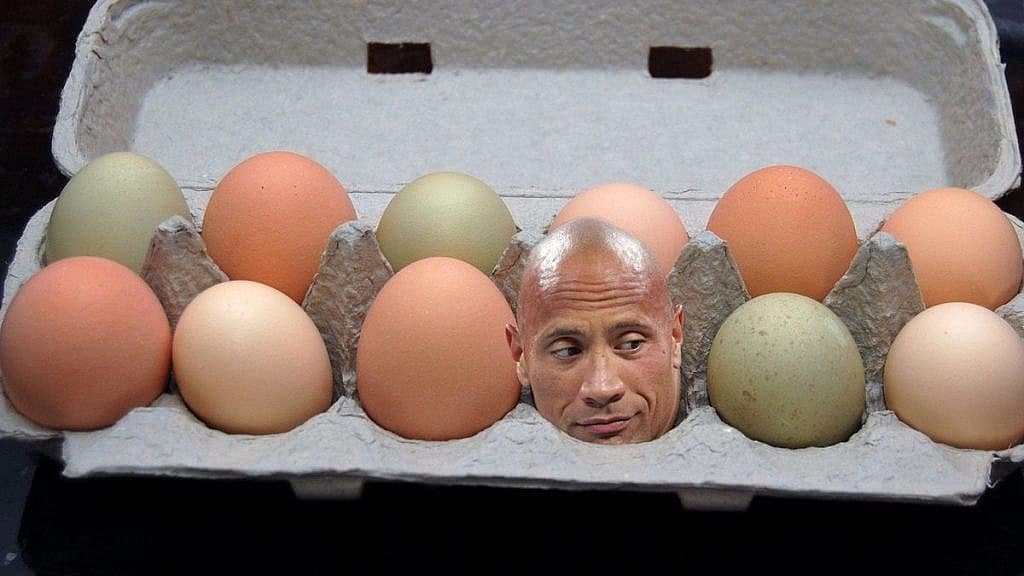 Dwayne The Rock Johnson Eats Enough Fish Everyday To Feed