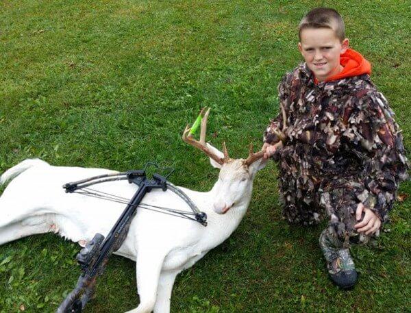 2014-Deer-Gavin-Dingman-Livingston-Crossbow-105-5-8-600x457