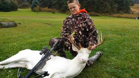11-year-old hunter kills rare albino buck receives death threats