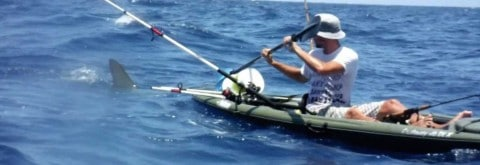 Hammerhead Shark Attacks Kayak Fisherman Video