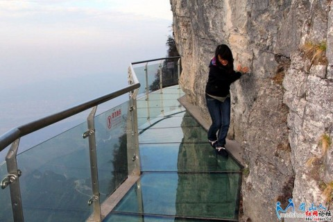 Tourists flee after glass walkway cracks in China