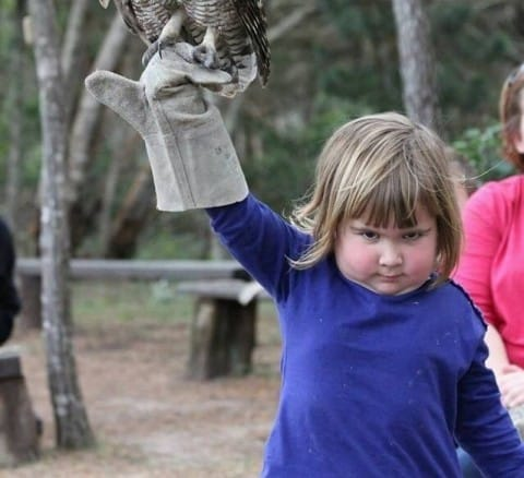 Diabolical girl holding owl creates Photoshop battle for ages