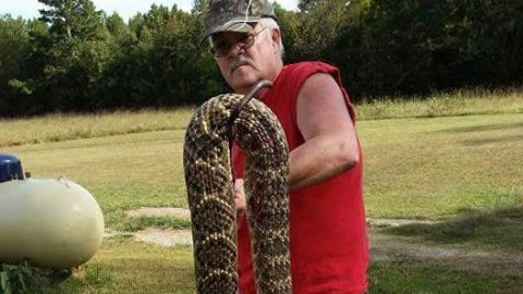 Potential biggest rattlesnake of all time goes viral
