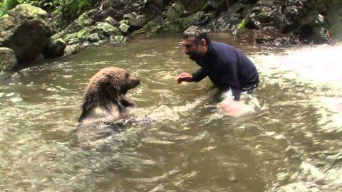 Idiot Gives Bear Hugs and Kisses