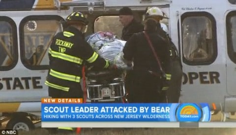Mauled Boy Scout Leader Fights Off Bear Attack With Hammer