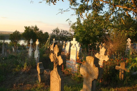 Man Illegally Duck Hunts … in a Cemetery