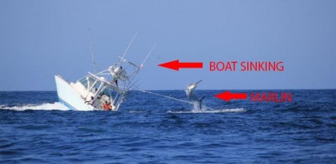 Marlin Sinks Fishing Boat; Vessel Capsizes After Hooking Huge Fish