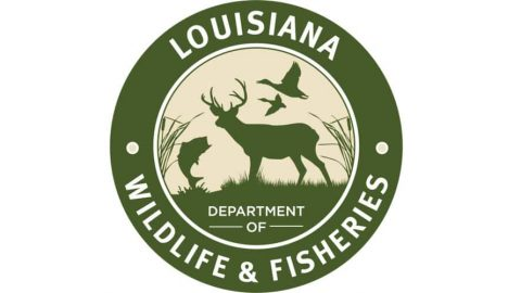 Wildlife Agent Busts Five Men Illegally Night Hunting on His Own Property