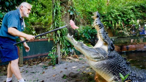 84-Year-Old Real Life Crocodile Dundee Lives with 18-Foot Croc