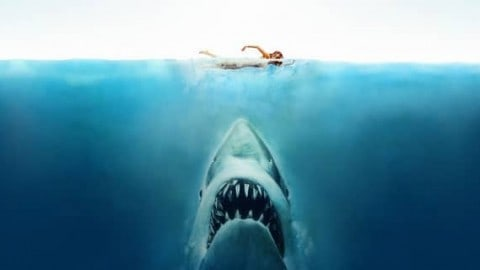 Top 10 Shark Movies of All-Time