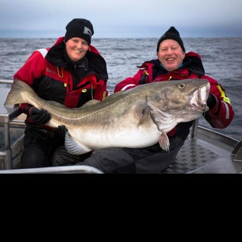 Monster 83-Pound Atlantic Cod Potentially Sets IGFA World Record