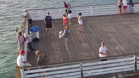 Don't Fly Your Drone Near the 'Drone Fisherman'