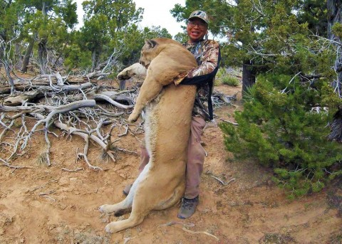 Shed Hunter Takes Down Ridiculously Massive Mountain Lion