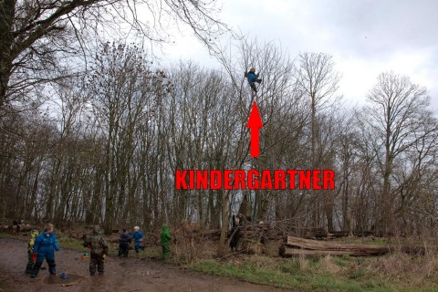 Playing with Knives, Climbing Trees, Stick Fights : A New Kindergarten for Future Outdoorsmen