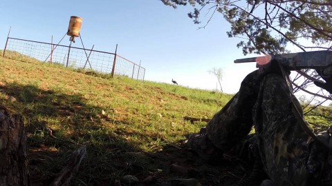 See What Could Have Killed Turkey Hunter; He Never Knew the Silent Killer Was There