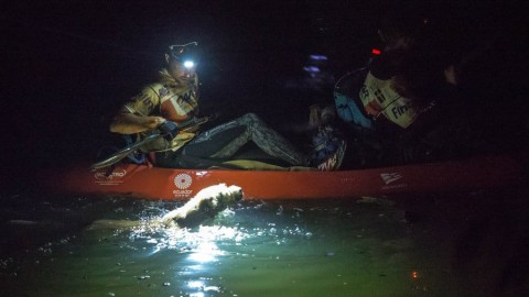 Kayaking Through the Dark When Something is Spotted That Makes International News
