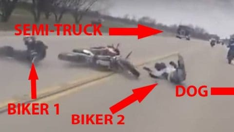 Insane Video of Motorcyclist Defying Death After Dog Nearly Kills Two Riders