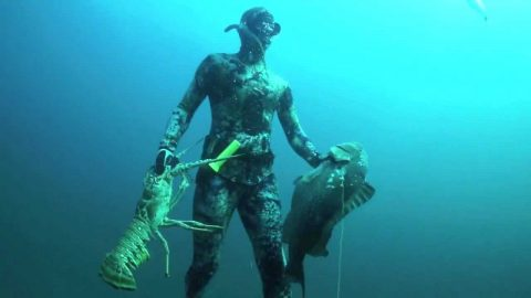 Free Diving Spearfisher Snags 19lb World Record Grouper and 8lb Lobster in One Breath
