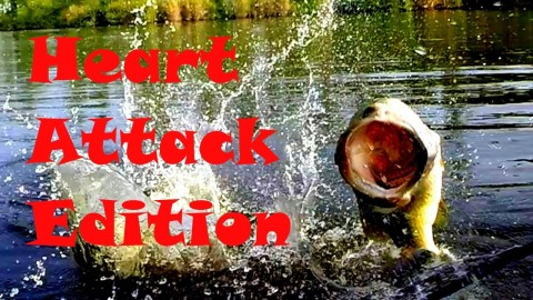 Topwater Strikes at the Boat – Heart Attack Edition