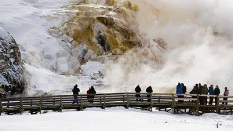 Man Fined $1,000 for Stepping off Boardwalk to Collect Thermal Water at Yellowstone