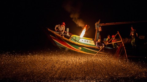 Fire Fishing: Remaining Fishermen Seek to Keep Ancient Practice Alive