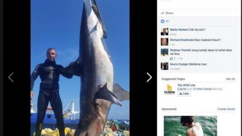 Police Investigate Diving Group After Posting Picture of Shark They Caught