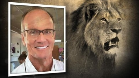 Man Steals, Crashes Boat Belonging To Dentist Who Killed Cecil The Lion: