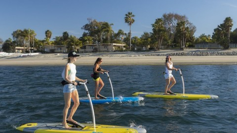 Forget Stand Up Paddle Boarding, Bicycle Paddle Boarding Is Here!