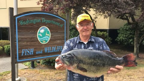 Long-Time Bass Angler Destroys 39-Year Old Largemouth Bass Record