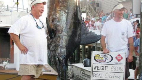 3 Year Legal Dispute Over $900,000 Marlin Lost Because Of A $5 Fishing License Settled