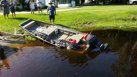 13-Foot Gator Pulls Boat Around And Bites Holes In It Before Being Killed