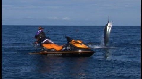 Marlin Caught From Jet Ski – It Doesn't Get Better Than This