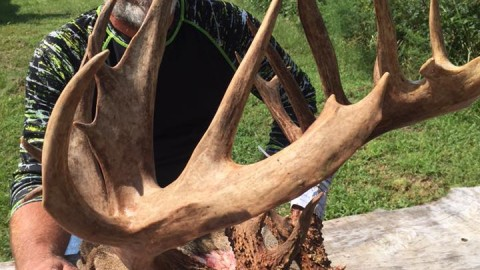 Archer Bags Incredible 36-Point Buck of a Lifetime