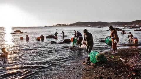 Photographer Chronicles The Last Days Of Real Life Mermaids, The Haenyo