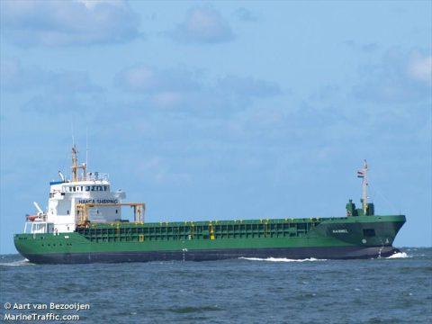 Fishermen's Dream: 80,000 Fish Escape After Cargo Ship Crashes Into Fish Farm