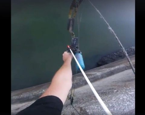 Bow Fisherman Makes Mind-Blowing Kill Shot From Top of Damn