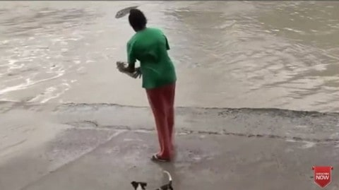 Woman Scares Off Crocodile With Her Flip Flop