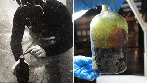 World's Oldest Beer Brewed After 220-Year-Old Yeast Found in Shipwreck
