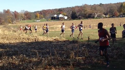 Cross Country Country Runner Gets Obliterated by Deer Mid-Race