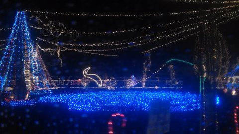 Christmas Lights Create a Fishing Wonderland