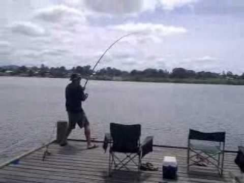See The Worst Possible Way To Lose A Monster Fish After Epic Battle