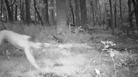 Trail Cam Photographs Naked Man High on LSD Who Thought He Was a Tiger