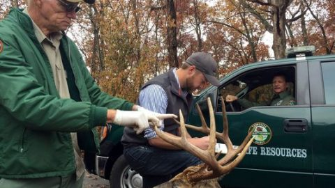 Man Fined $10,000 for Killing 11-Point Buck