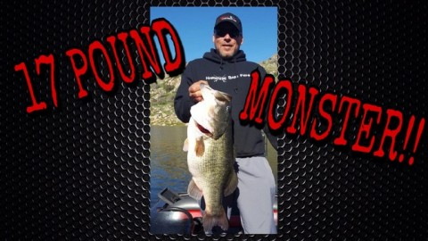Angler Catches a Monster 17.2-Pound Bass