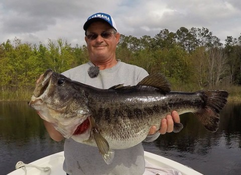 Bass Guide Gets Stood Up By a Client, So He Has the Lunker Day to End All Lunker Days