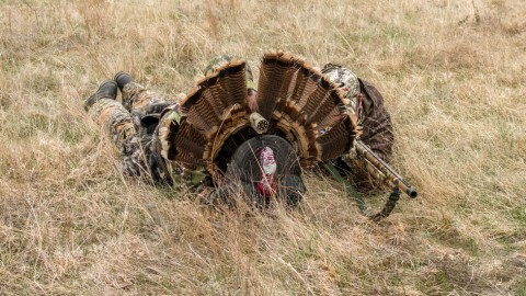 Hunter Mistakes Turkey Fan for Real Turkey, Shoot His Two Friends Behind It