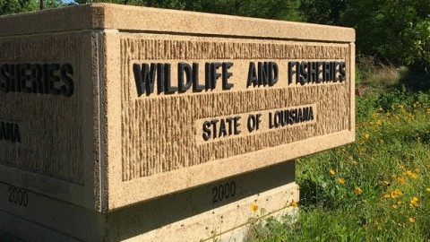 Former Wildlife & Fisheries Employee Puts Items Up for Sale Matching Those Missing from Inventory