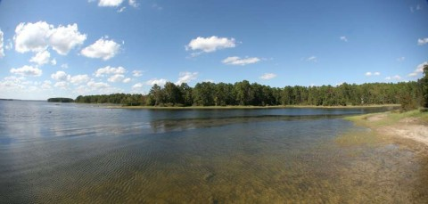 Anglers Cited for Harassment After a Gun Was Pulled During Argument on Toledo Bend